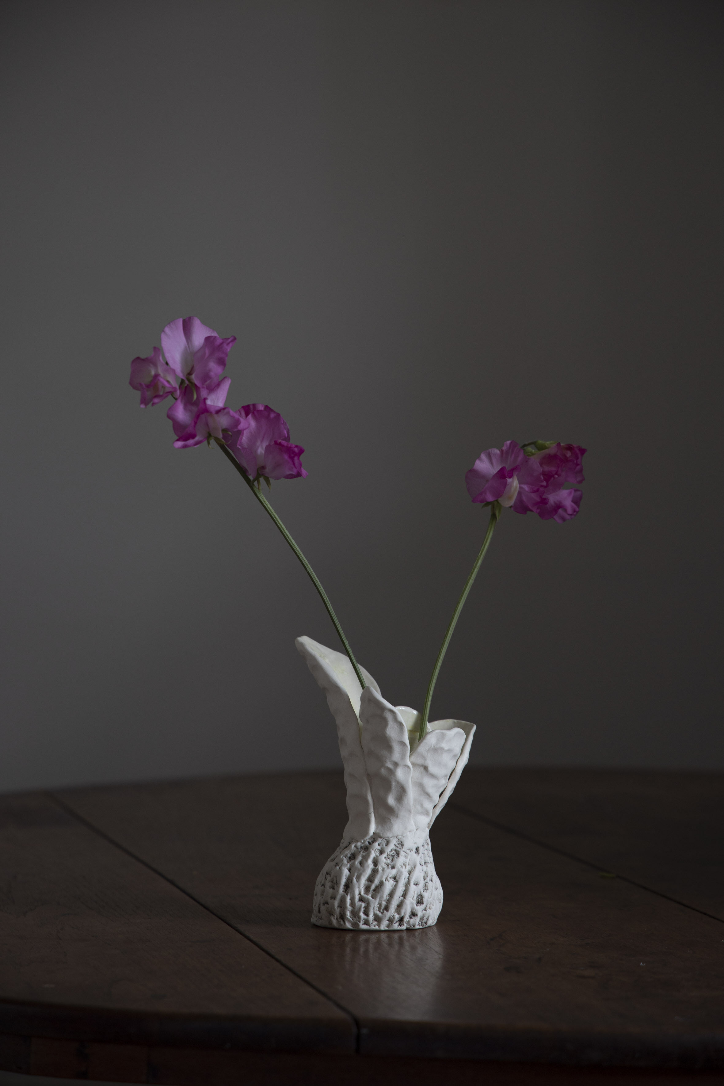 Robyn Phelan. Conversations with black wattle with sweet pea