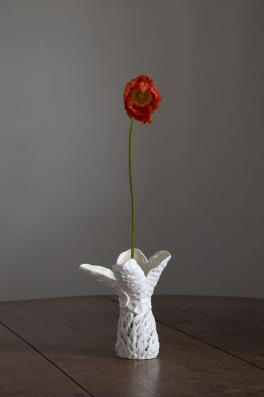 Robyn Phelan. Conversations with black wattle with poppies